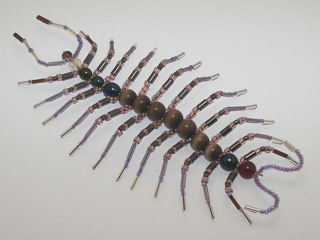 Beaded Centipede #204